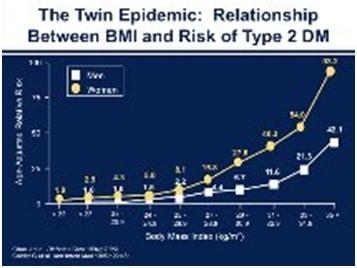 twin_epidemic