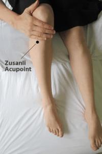 Zusanli acupoint
