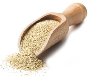 Yeast - Enhance the function of insulin