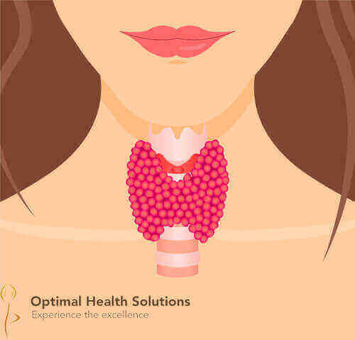 Check thyroid function